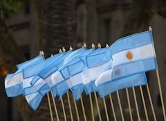 ARGENTINA a pesar de todo y todos (Ivn Utz) Tags: southamerica argentina buenosaires sony banderas patriotismo banderaargentina sudamrica sonydsch2 dsch2 celesteyblanca argentinidad