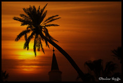 The Thousand Nights and a Night ! (Bashar Shglila) Tags: sunset sky sun silhouette clouds palm wahab libya tripoli abdul masjid bab libyen bhar lbia gasi libi libiya abdulwahab liviya libija  algasi    lbija  lby libja lbya liiba livi