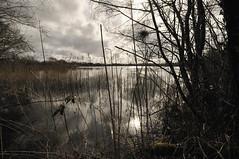 St Renan - Le Mespaol (philblt) Tags: water bretagne breizh britanny otw saintrenan penarbed dragondaggerphoto bzh29 philblt philippebourgault