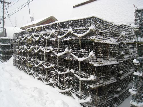 snow lobster pots