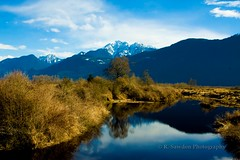Golden Ears- Pitt Lake (R. Sawdon Photography) Tags: marsh mapleridge pittlake goldenears pittriver pittpolder rsawdonphotography