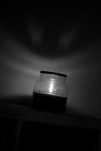 Shadow DSC_5127