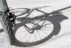 59:365 Bike shadow