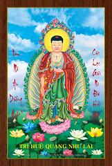 08 - Tr Hu Quang Nh Lai (Jade Lotus *) Tags: buddha nhu to lai phat amita amida amitabha adida jadelotus 12hngdanhcacpht