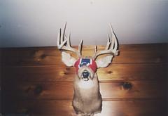 deer (WOLF CHOIR) Tags: minnesota america cabin 1999 smoking deer antlers buck ungulate execute woodpaneling blindfold execution bwcaw lastsmoke lastwords autaut deerparty bucktalk calebgotmad weusedhisbandana