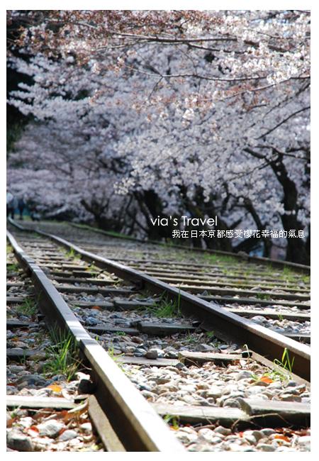 【京都旅遊】Via的京都自由行第5天~京都+大阪