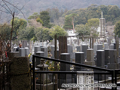 Graveyard tucked in the bamboo forest