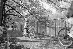 町田樹 画像83