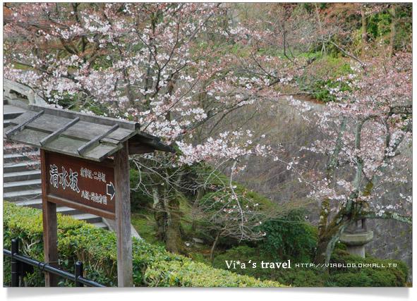 【京都春櫻旅】京都旅遊景點必訪~京都清水寺之美京都清水寺12