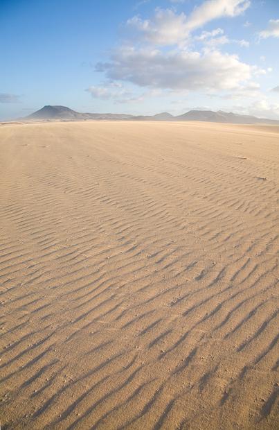 dunes, vertical format