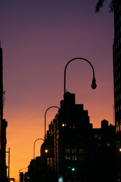 manhattan sunset by lily