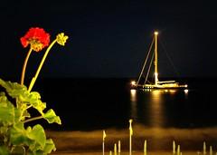 presenze nella baia (ludi_ste) Tags: sea mer boat mare liguria sail vela bateau voile barac alassio