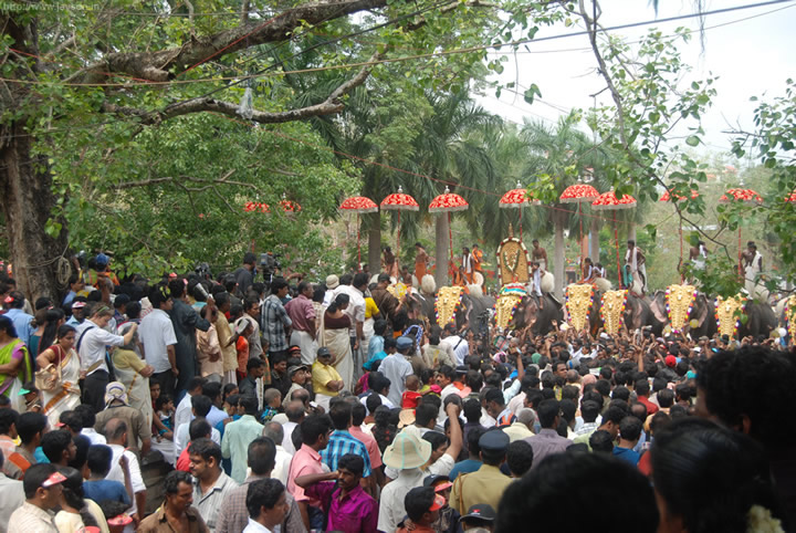 thrissur pooram - Sea of humanity
