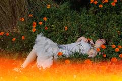 queen of the fire (taraviolet.) Tags: grass fire dream noel lightleak poppies petticoat dandelions ilovewhatyouvebeendoinglately samehereiloveittara ihatewhatidolately okayokayiwontdeleteit