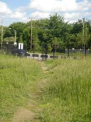 Pershing desire path