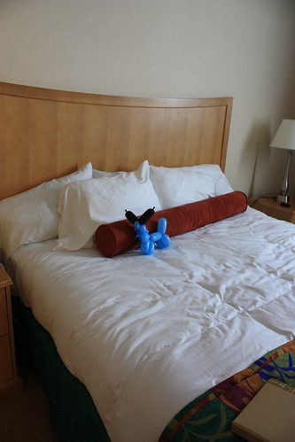 bed florida balloon cocoabeach balloondog efs1855mmf3556is