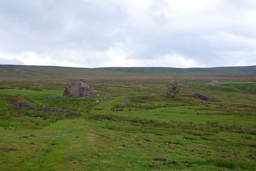 Allenheads, old house remains