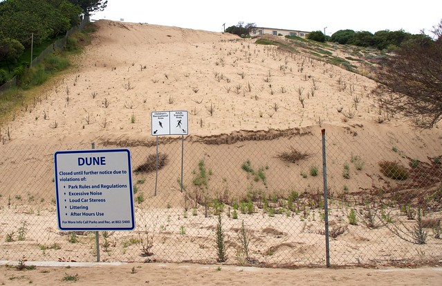 The sand dune-- 8 months after being closed