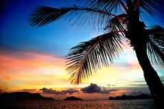 (Rajeev's Red Carpet) Tags: ocean trip holiday beach boys pool sunshine swim fun snorkel weekend father son malaysia langkawi