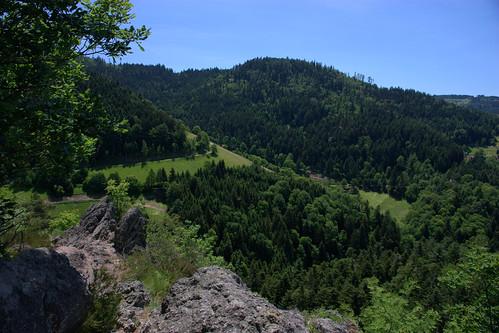 Aussicht über den Schwarzwald