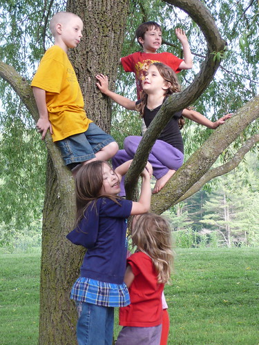 Five little cousins in a tree