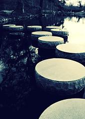 everywhere I go I find (phoebe reid) Tags: park garden virginia pond richmond va steppingstones maymont acrossthepond