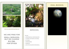 "Preview of ""OWL BOOKS BROCHURE."""