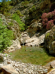 old photo enhanced (egotoagrimi) Tags: 2004 ikaria canyon  trailtoparadise  angelolivada agrimi angelspool