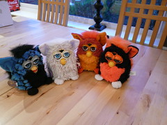 New furbies