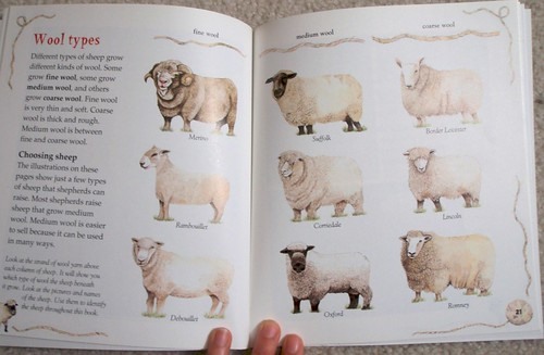 Sheep book - wool types
