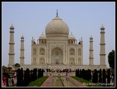Taj Mahal | താജ് മഹല് | ताज महल | تاج محل