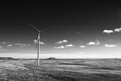 it stands alone (//d.) Tags: blackandwhite landscape stlawrence windturbine windpower greenenergy windfield