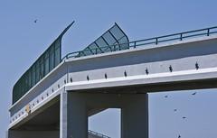 Star Bridge (TPorter2006) Tags: bridge star texas may wells mineral 2009 tporter2006
