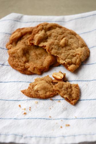 Peanut Crisps 4