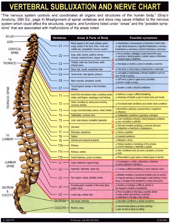 nerve_chart.jpg