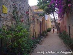 Ilha-Goree-Island-Dakar-UNESCO-Senegal-West-Africa-Ocidental (38)
