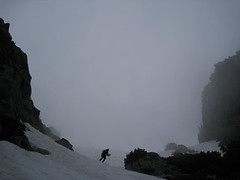 skier in the mist