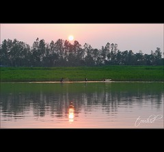 Nodir Buke Sondhya (sytoha / Syed Touhid Hassan) Tags: sunset people reflection green nature river evening fishing bangladesh settingsun fishingnet sunshot jamuna bogra justbeforesunset ruralbangladesh sariakandi sytoha syedtouhidhassan riverinebangladesh