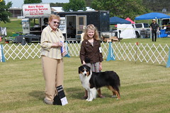 Best of Opposite, showing Ava, Jodi Dovel's Aussie