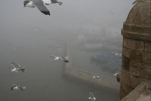 Essaouira Harbour In The Fog