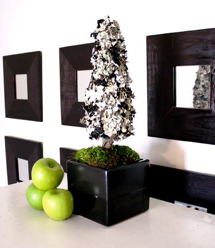 Black & White Lichen Topiary