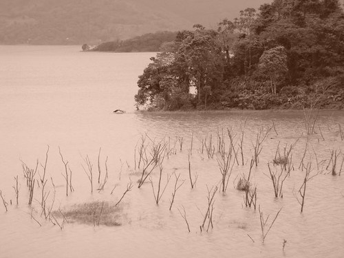 Ghosty Lake Arenal...