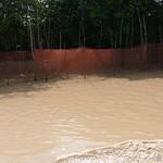 Campong Phluk (38) thumbnail