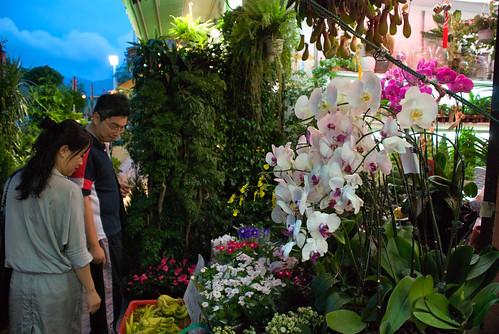 Flower Market 01