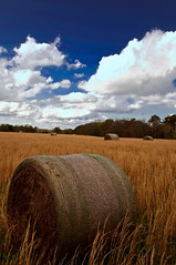 Never-ever Land (shayallen) Tags: blue sky field grass clouds landscape farm alabama hay bail shayallen