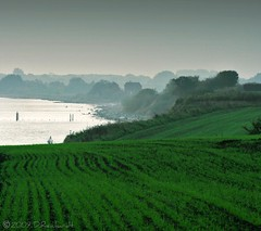 Landscape (D.Reichardt) Tags: sea green field landscape denmark europe ostsee mommark aplusphoto goldenheartaward