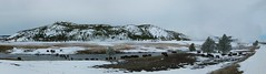 Yellowstone- BisonHerd crossing Firehole River near Midway (Wanderlust Dreamer) Tags: winter buffalo wildlife wyoming bison fireholeriver midwaygeyserbasinyellowstone yellowstonenpwyoming