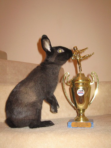 """Lucky kissing his new """"claimed"""" throphy"""