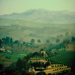 Rural Landscape (Osvaldo_Zoom) Tags: italy mist fog rural landscape bravo agriculture marche macerata familyfarming vosplusbellesphotos agriscape multipurposeagriculture