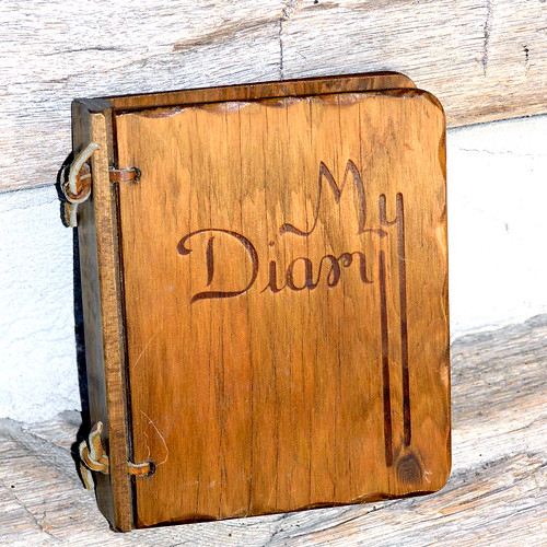 My Diary by cluttershop.